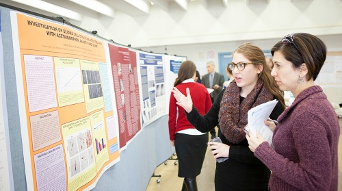 Celebrating Student Research, cross-dscipline