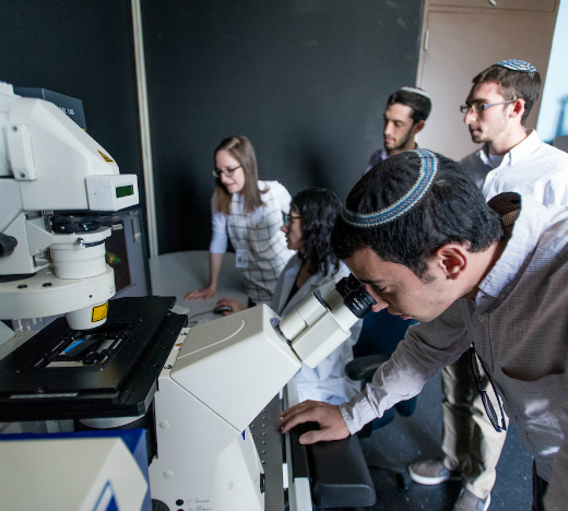Students in the lab of Dr. Josefa Steinhauer (second from left) use the confocal microscope to