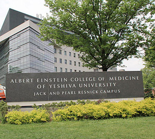 Albert Einstein College of Medicine Achieves Independent
