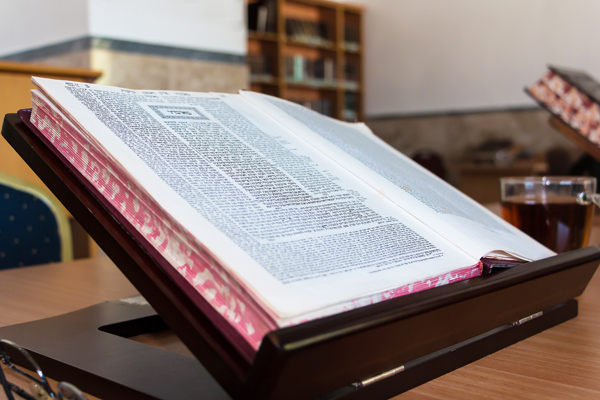 Torah study, stender Beit Midrash in hebrew