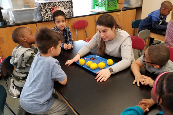 Teacher and student discuss how five lemons on the table in front of them can become a battery.