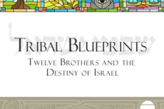 Cover of Tribal Blueprints