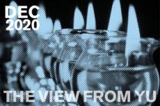 View from YU December 2020 header