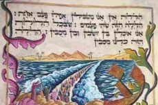 A haggadah from the Belz collection