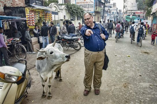 Rabbi Dr. Alan Brill During Sabbatical Year in India speaking to a cow in the middle of a street